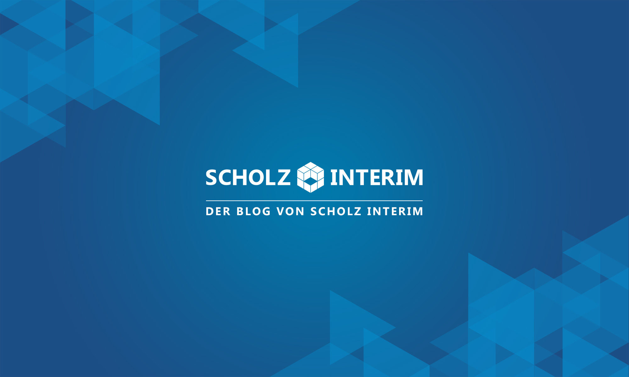 blog.scholz-interim.de